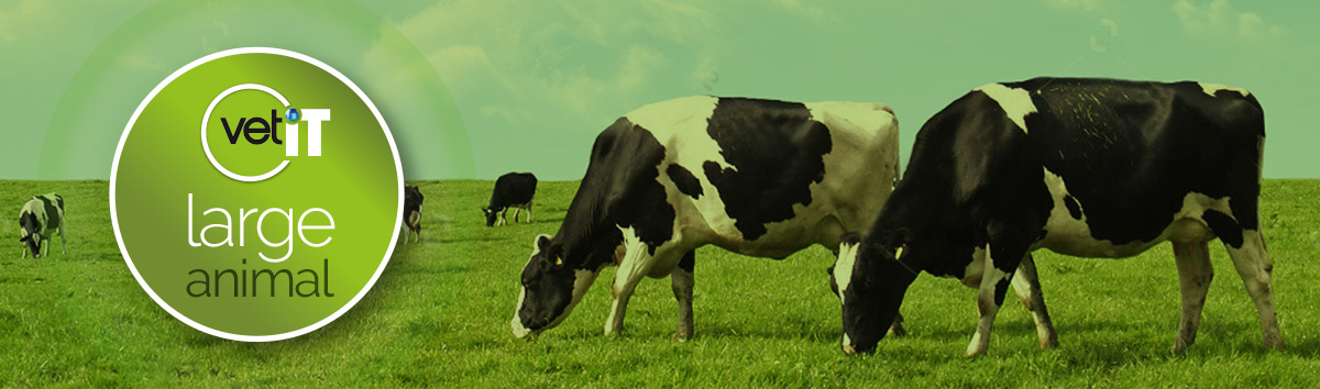 Veterinary Software For Large Animal Practices